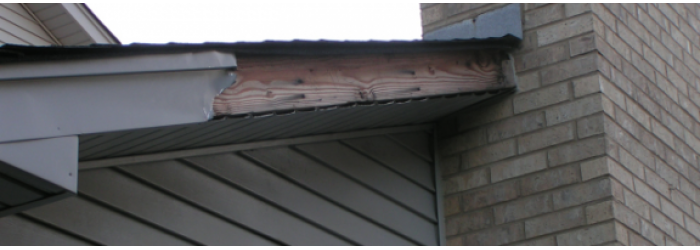 Wind Damaged Trim